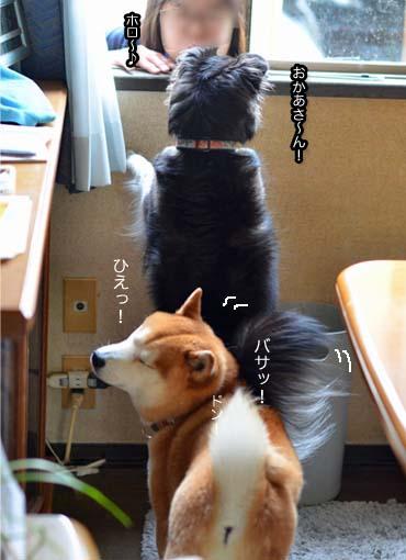 12日ブログ3.jpg