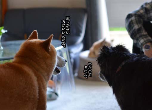 12日ブログ9.jpg