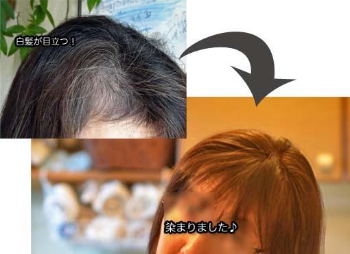 28日ブログ5.jpg