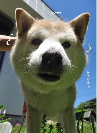 12日ブログ7.jpg