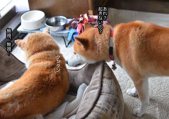 8日ブログ8.jpg