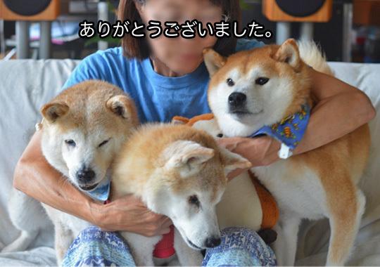 8日So-netブログ4.jpg